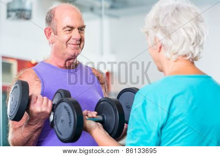 senior couple, man and woman, in gym lifting dumbbells in fitness exercise workout