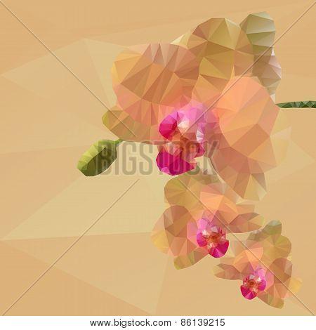 polygonal mosaic of orchid vector illustration
