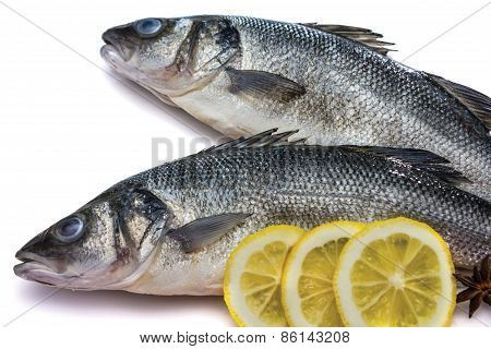 Sea Bass Fish Whit Lemon And Star Anise On Withe Background