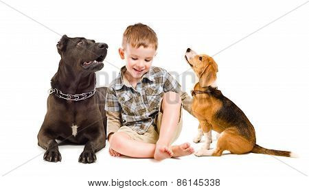 Cheerful boy sitting with two dogs