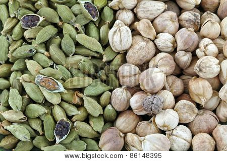 Closeup of Dried green Cardamon pods and Round Siamese Cardamom (Camphor Seed)