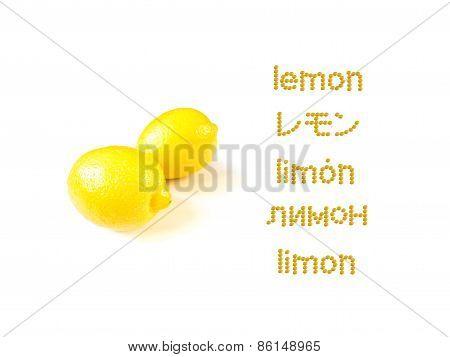 Lerning Many Lungage; Lemon