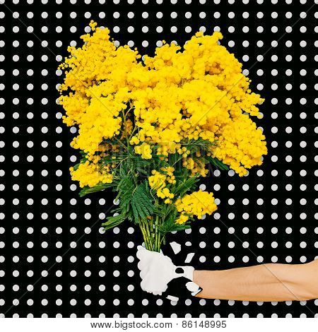 Elegant Hand Holding Bouquet Mimosa Flowers On A Background Polka Dots