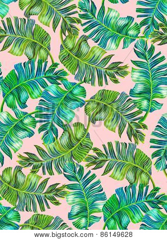 Tropical Foliage Pattern, Banana Palm Leaves