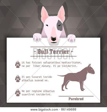 bull terrier dog banner