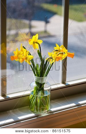 Bouquet Of Yellow Daffodils In A Glass Vase Near Window. With Reflection And Lens Flare.