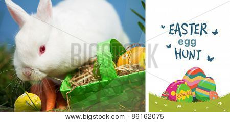 easter egg hunt graphic against white rabbit sitting beside easter eggs in green basket