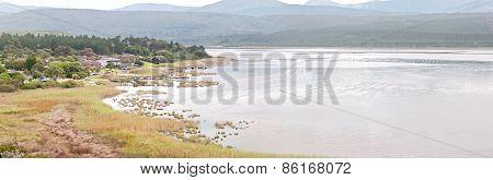View Across Swartvlei