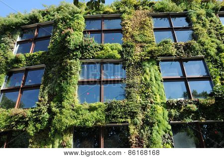A Green Wall In Paris, France