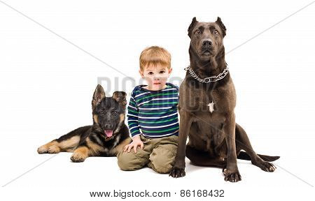 Cute boy sitting with two dogs