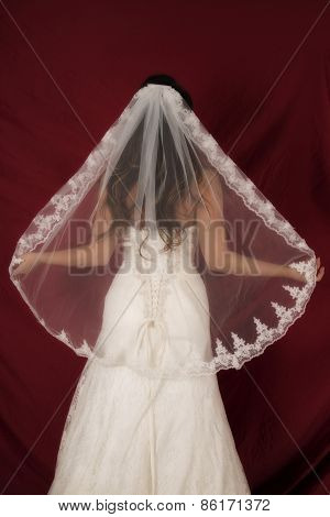 Woman In Wedding Dress Back Veil Out On Red