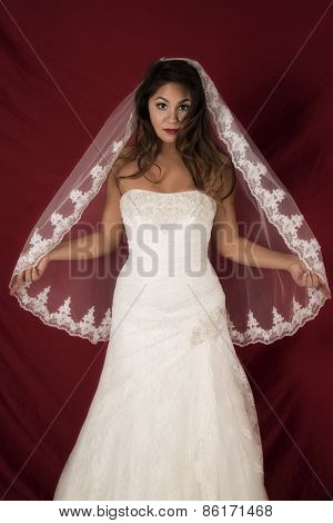 Woman In Wedding Dress Front Veil Out On Red Looking