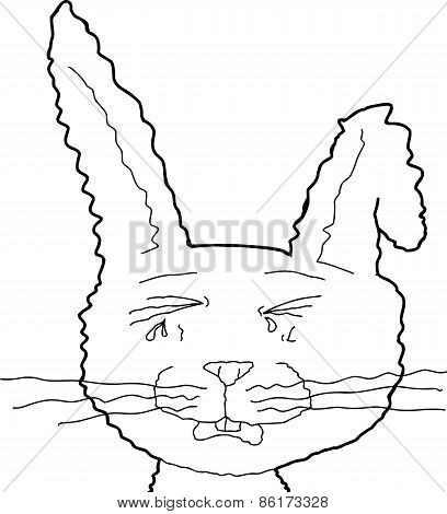 Outlined Crying Rabbit
