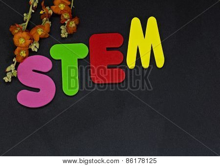 Education Represented With Letters Stem, Science Technology Engineering And Math