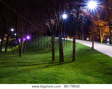 night in the park with bulb lights and alley