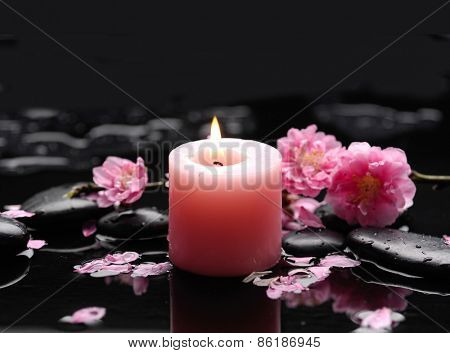 pink cherry blossom with candle on black stones