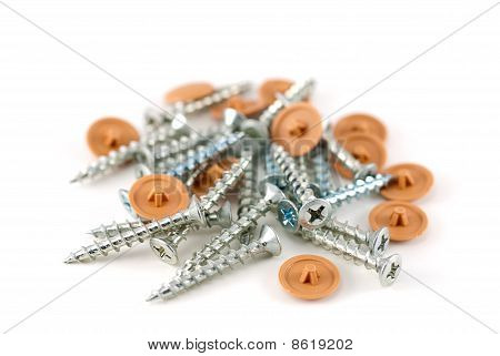 screws on white background