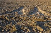 stock photo of cultivation  - agriculture tractor traces on cultivated farm field earth soil - JPG