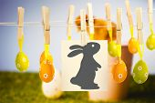 image of stuffed animals  - easter bunny against stuffed chick in pink bucket - JPG