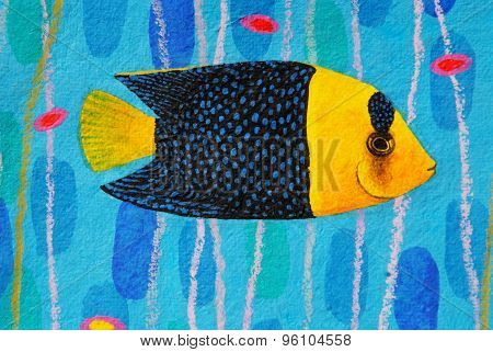Bicolor Angelfish, Centropyge Bicolor