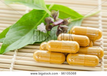 Yellow Herb Medical Capsule And Green Leaf.