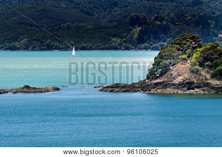 Landscape Of Northland New Zealand.