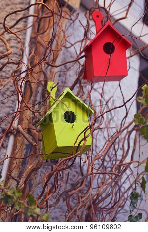Two Colorful Wooden Birdhouses On A Tree