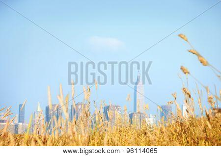 Hill city Grassland Field Natural Scenics Concept