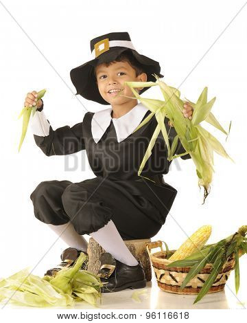 A young Pilgrim boy happily husking corn.  One a white background.
