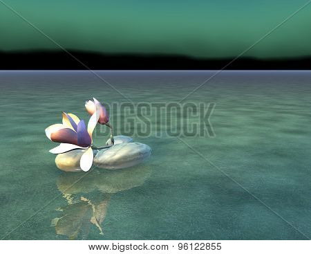 Zen background with flower and water.