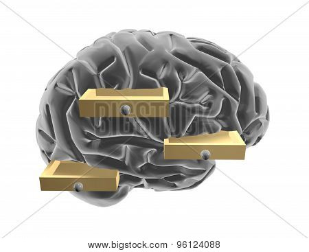 3D Brain And Drawers.  Thinking Outside The Box Idea.