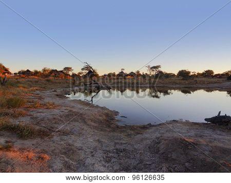 Elephant Lodge In Botswana