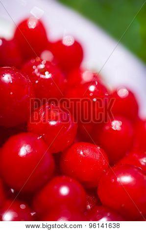 Fruits Downy Cherry Closeup