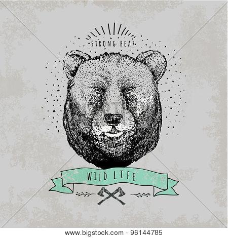 Vintage  Bear logo.