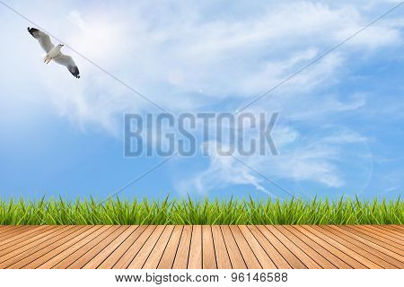 Wood Floor And Grass Under Blue Sky And Bird