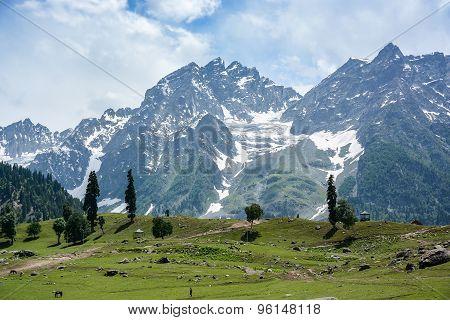 Mountain View Of Sonamarg, Kashmir, India