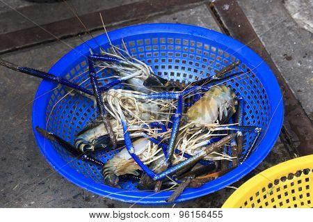 Fresh Prawns For Sale In Saigon