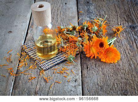 Homemade Calendula Oil