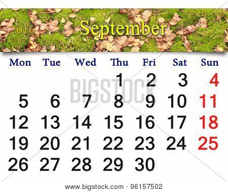 Calendar For September 2016 With The Moss And Leaves