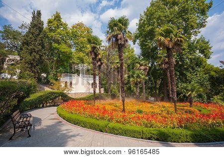 garden landscape with fountain