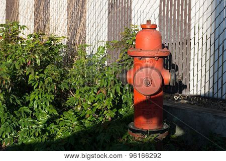 Fire Hydrant With Fence