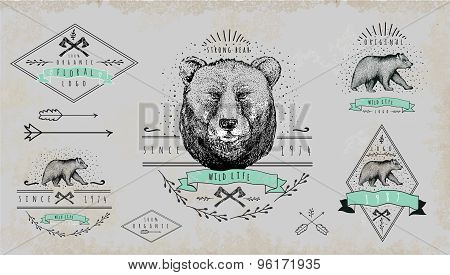 Set of vintage  bear logo. Design for t-shirt.