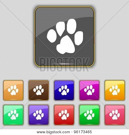 Trace Dogs Icon Sign. Set With Eleven Colored Buttons For Your Site. Vector