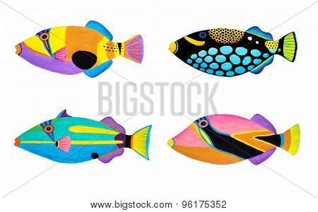 Collection Of Triggerfish