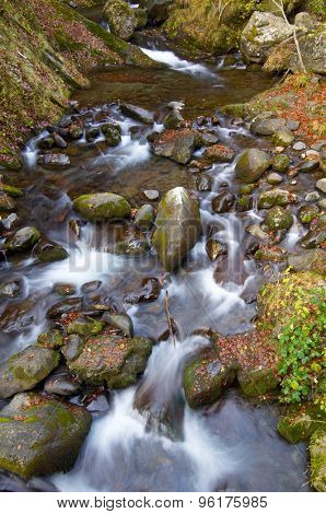 silky stream in a forest in autumn in Aspe Valley, Pyrenees, France
