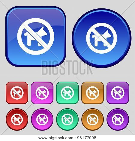 Dog Walking Is Prohibited Icon Sign. A Set Of Twelve Vintage Buttons For Your Design. Vector