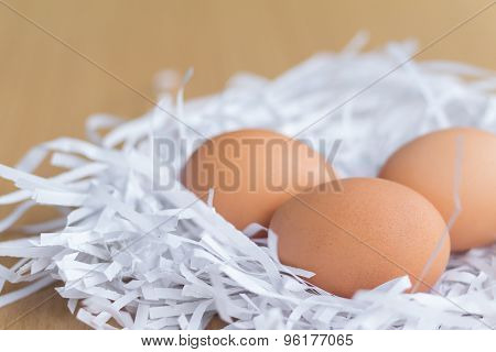 Pile Of Chicken Eggs