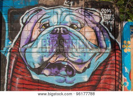 Street Art Graffiti. Dog Paintings On The Wall.