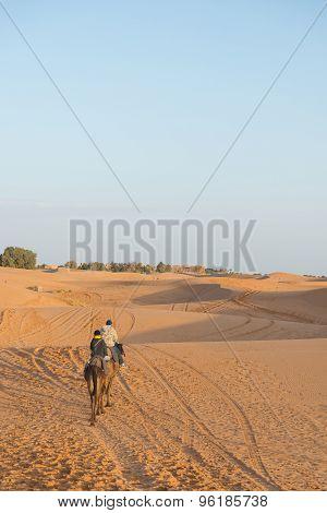The Asian Tourist Ride Camel In Sahara Desert