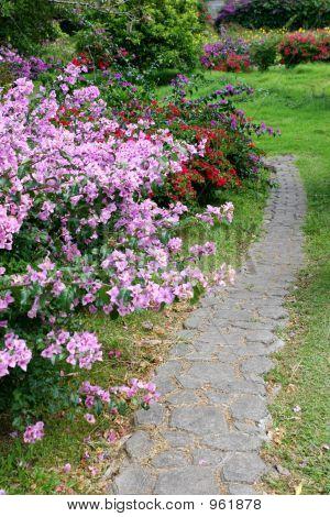 Garden Road Vertical